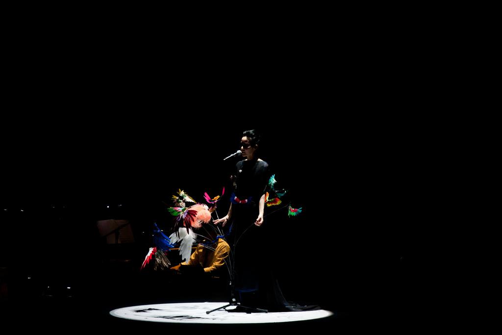 同樣是2011年演唱會上的王菲。